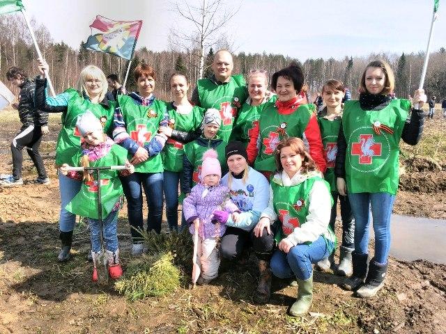 Работники Талдомской ЦРБ приняли участие в акции «Лес Победы»